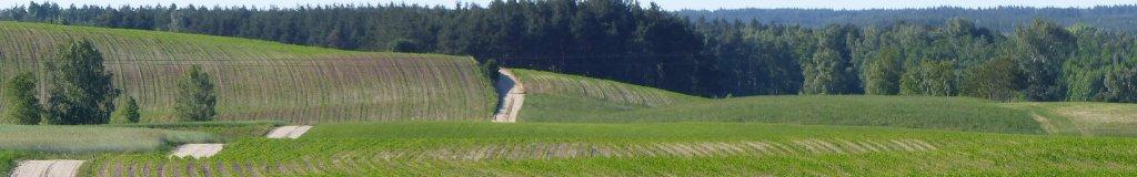 panorama-lipiec-08