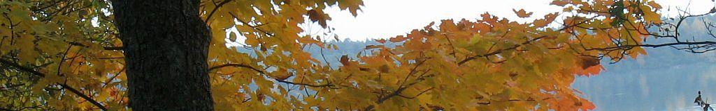 panorama-pazdziernik-18