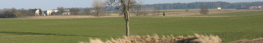 panorama-marzec-11